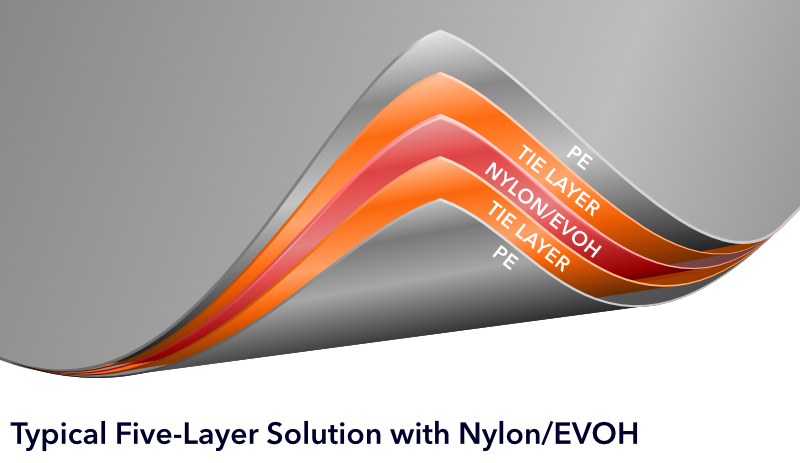 Typical Five-Layer Structure with Nylon/EVOH
